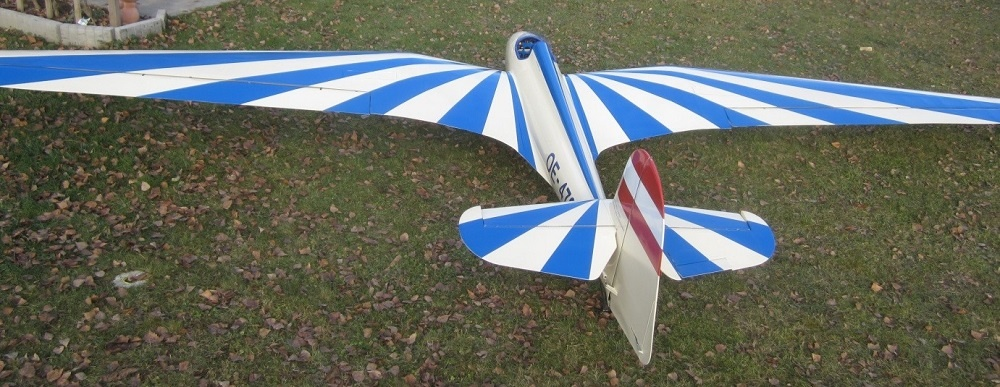 MS DFS Habicht 1936 4750mm wingspan