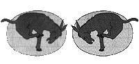 95th Aero Sq. A.E.F. (tretender Muli) Staffelabzeichen 1:6