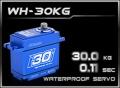HD-Power Digital Servo WH-30KG wasserdicht